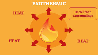 Exothermic Reaction Examples Found In Real Life