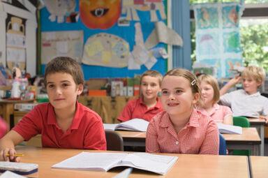 Standards for Teaching Elementary ESL
