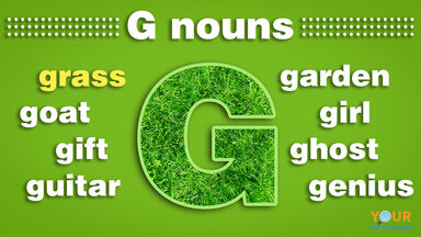 nouns that start with g