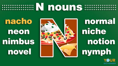nouns that start with n