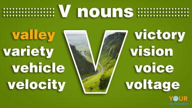 nouns that start with v