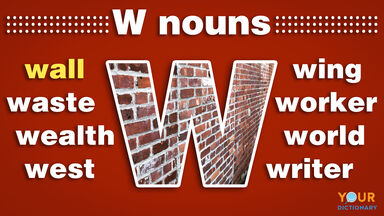 nouns that start with w