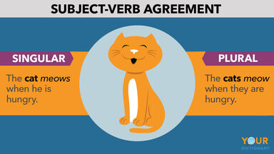 what is subject verb agreement example