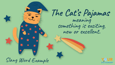 slang word example of the cat's pajamas