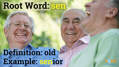 Senior comes from the root word sen