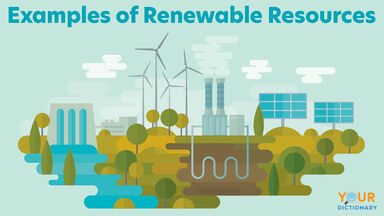 Examples of Renewable Resources