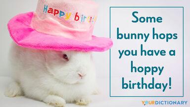pun bunny hoppy birthday