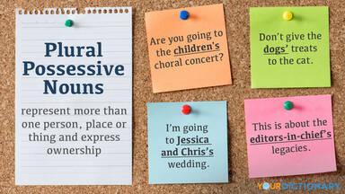 Plural Possessive Noun Examples