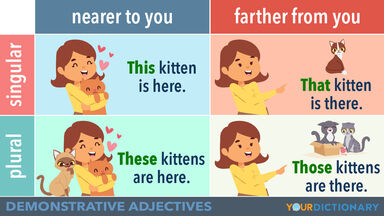 Demonstrative Adjective Examples