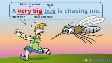 Adjective Phrase Example