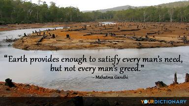 mahatma gandhi quote environment