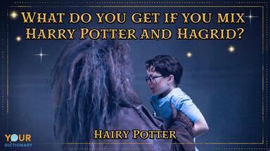 Harry Potter Puns Hagrid