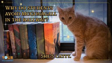 Harry Potter Puns McGonagall
