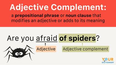 Adjective Complement Examples