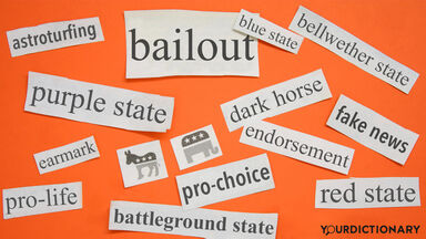 Examples of Political Jargon
