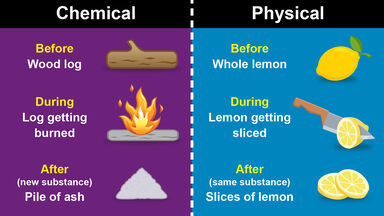 difference between chemical and physical change