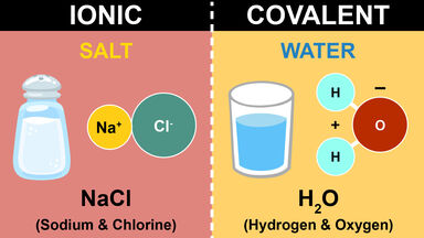 difference between ionic and covalent