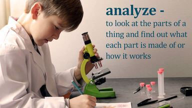 definition for science term analyze