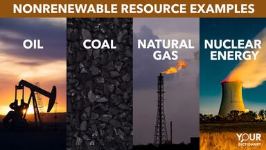 Nonrenewable Resources oil coal natural gas nuclear energy