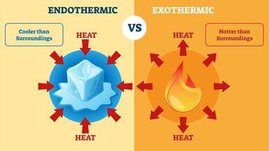 endothermic vs exothermic