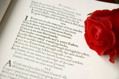 A sonnet with a red rose as sonnet examples