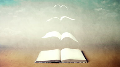 surrealism in literature with book turning into birds