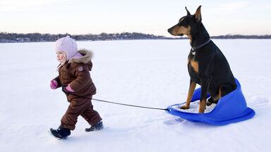 Example sliding friction girl pulling dog on sled