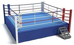 Image of a professional wrestling ring