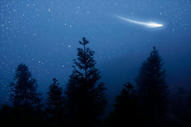 comet in night sky above trees