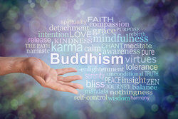 admirable Buddhism virtues