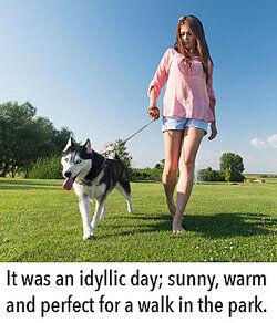 "context clues help define ""idyllic"""