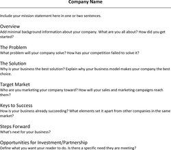Executive Summary Example For An Effective Business Plan