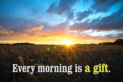 Beautiful sunrise in a cornfield