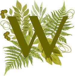 capital letter w
