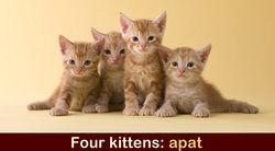 Four is apat in Tagalog