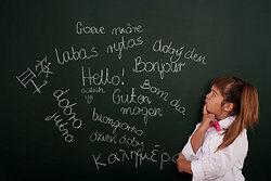 Grammar and Language Courses