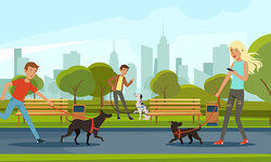 daily routine of people walking dogs in a park