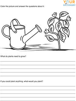 kindergarten writing prompts with pictures