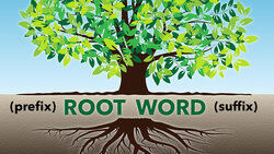 100+ Root Word Definitions and Meanings