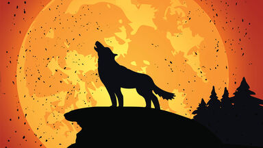 call of the wild wolf howling