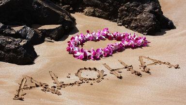 English word with Hawaiian origin aloha