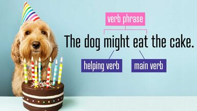 verb phrase with helping and main verb diagram