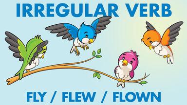 irregular verb example fly flew flown