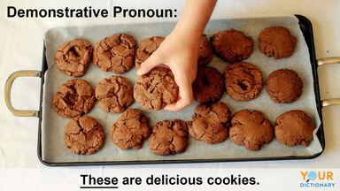 demonstrative pronoun example