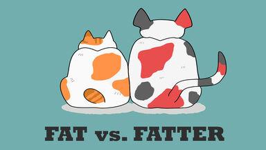 fat vs. fatter comparative adjective