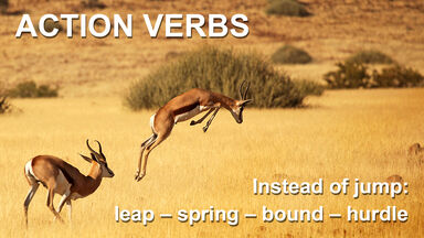 action verbs example