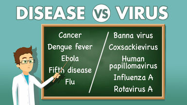 Example of Disease vs Virus