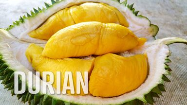 foods that start with d durian