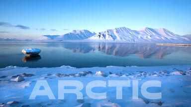 Arctic mountains in ocean