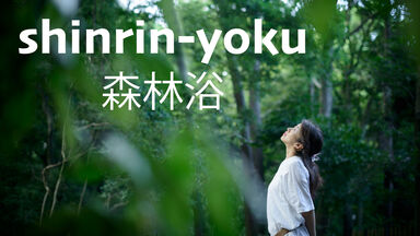 translation of japanese word shinrinyoku is forest bathing